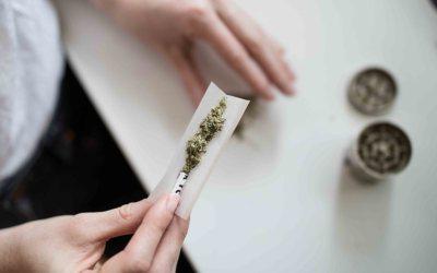 Mitos y Realidades sobre el Consumo y Legalización del Cannabis