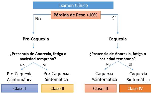 Ilustración 2. Diagnóstico de Caquexia Cancerosa