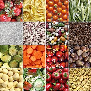 Dieta FODMAP, bases científicas y evidencias. Por: Alexis Borboa y Karla J. Botello
