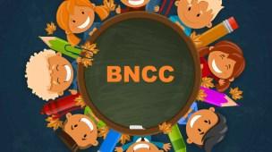 Currículo segundo a BNCC