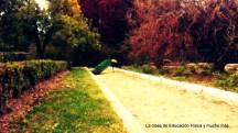 Los pavos conviven con los visitantes de los jardines