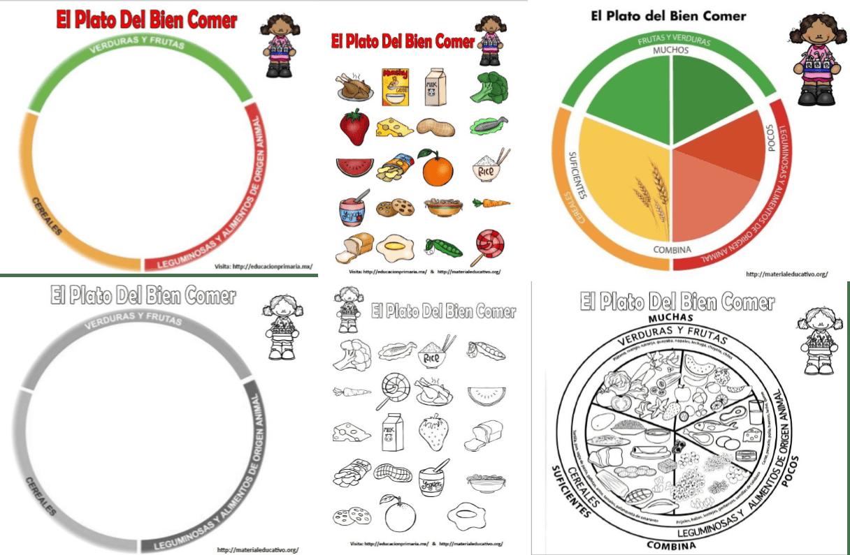 El Plato Del Bien Comer Para Armar Colorear Y Explicar