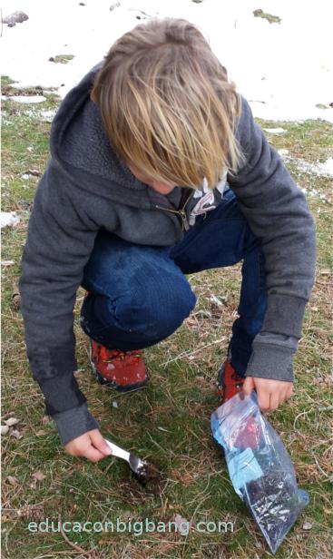 Sacando una muestra de suelo