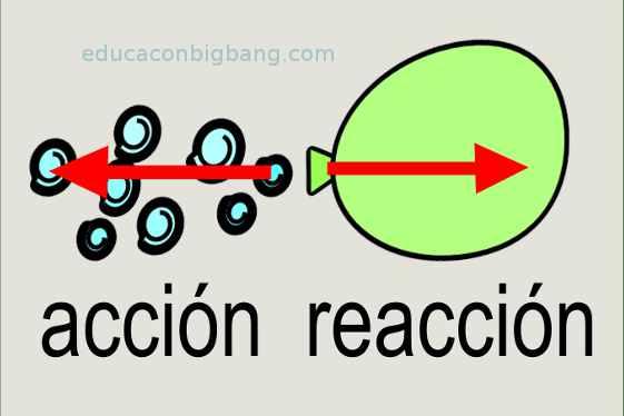 accion reaccion