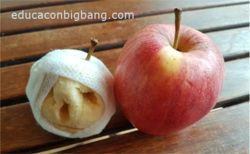 manzana momia comparada con manzana fresca