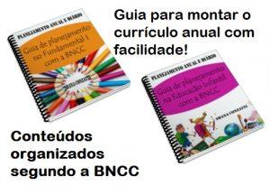 plano anual segundo a BNCC