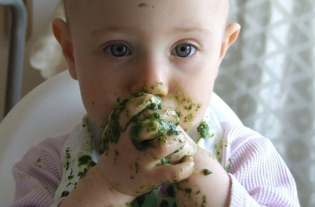 alimentos no bebé