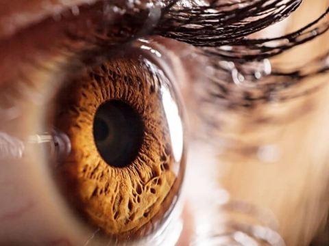 Lectura con los ojos | en Educando tu mirada