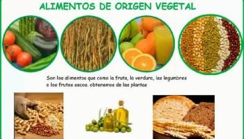 Dibujos y Figuras de Alimentos de Origen Animal  Material para