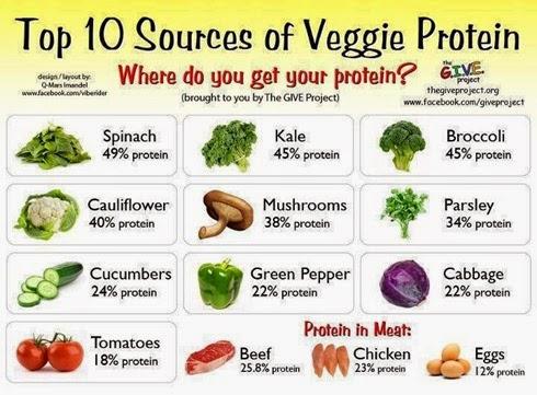 Verduras con nombres en ingles mas im genes material - Verduras lista de nombres ...