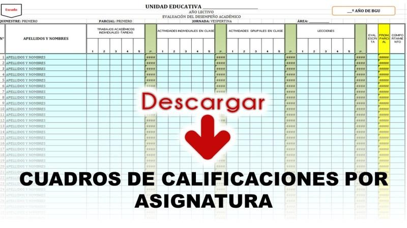 Cuadros de calificaciones por Asignaturas del Ministerio de Educación
