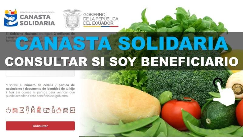 Canasta Solidaria 2020 consultar si soy beneficiario