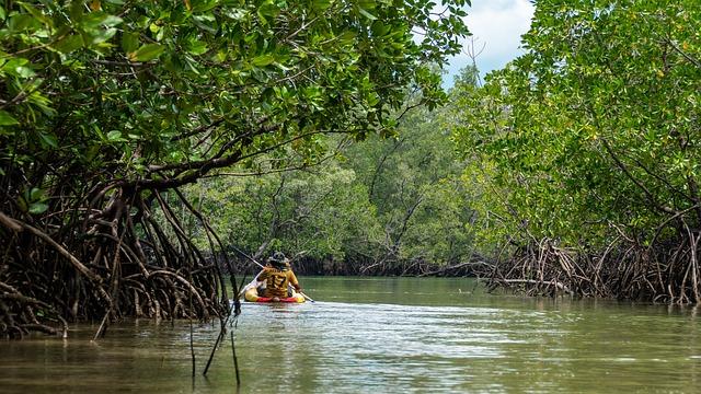 manglares del ecuador pdf manglares del ecuador manglares del ecuador flora y fauna