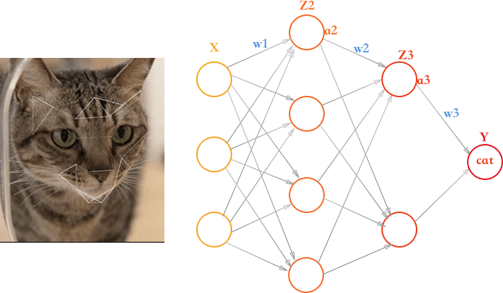 Nodes on a network connect together in a complex combination and are fed sample images to learn from in order to learn patterns. These patterns can be used to recognize objects.