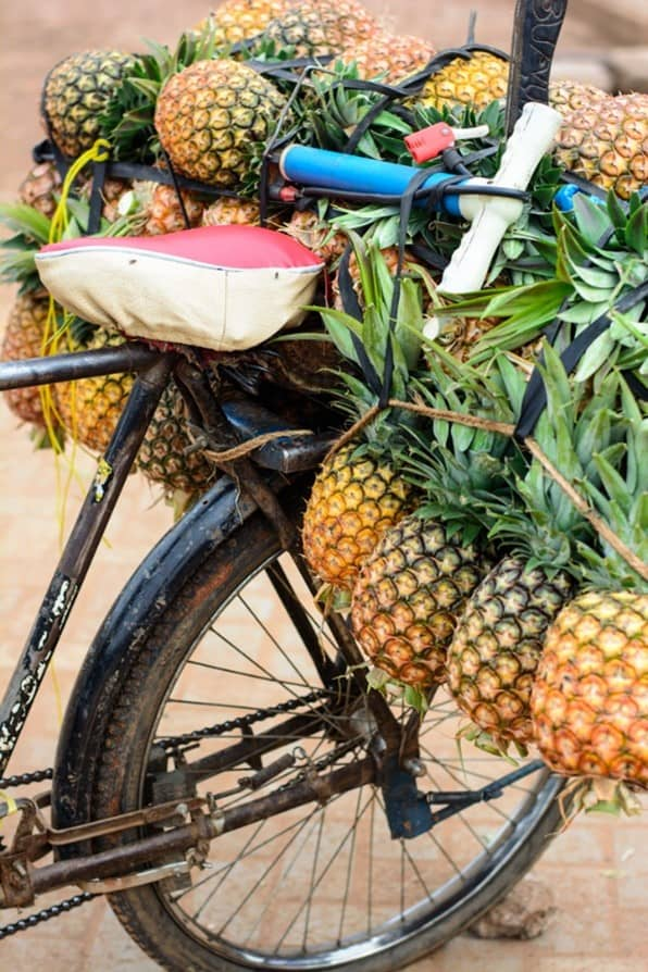 bicycle-with-pineapples