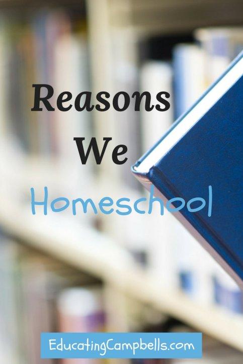 Reasons We Homeschool