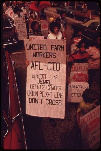 Workers picketing, holding signs