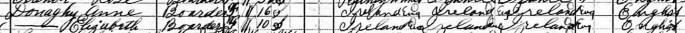 Close up of census document