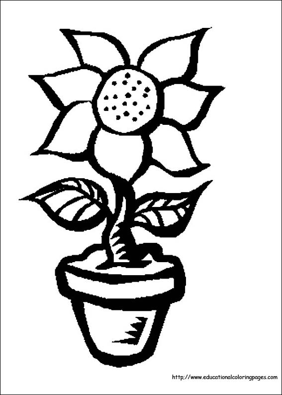 free coloring pages flowers # 7