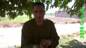 الحسينى محمد _الخوجة_رحلة اكل التوت