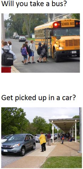 will u take a bus