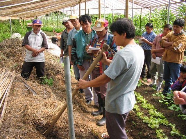 Bachelor Degree Programs In Community Development