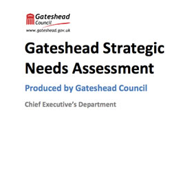 Strategic Needs Assessment