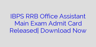 IBPS RRB Office Assistant Main Exam Admit Card Released  Download Now