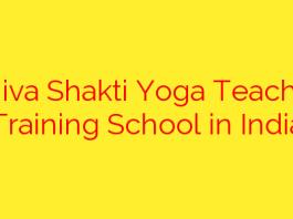 Shiva Shakti Yoga Teacher Training School in India