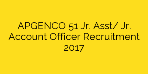 APGENCO 51 Jr. Asst/ Jr. Account Officer Recruitment 2017