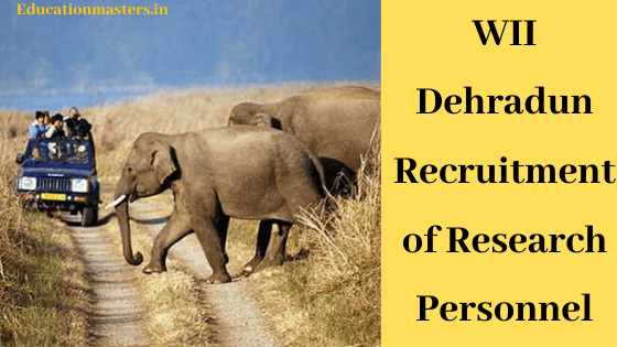 WII Dehradun Released Recruitment of Research Personnel