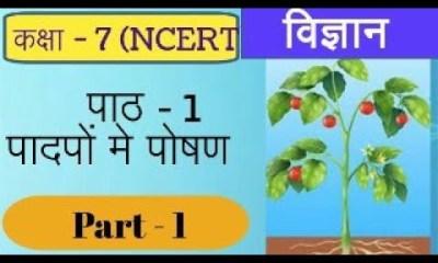 DigiLEP कक्षा 6th-8th हिन्दी 3-12 वाक्य - अनुच्छेद लेखन विज्ञान पादपों में पोषण 09.07.2020