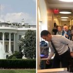 Reporters panic as mouse falls from White House ceiling