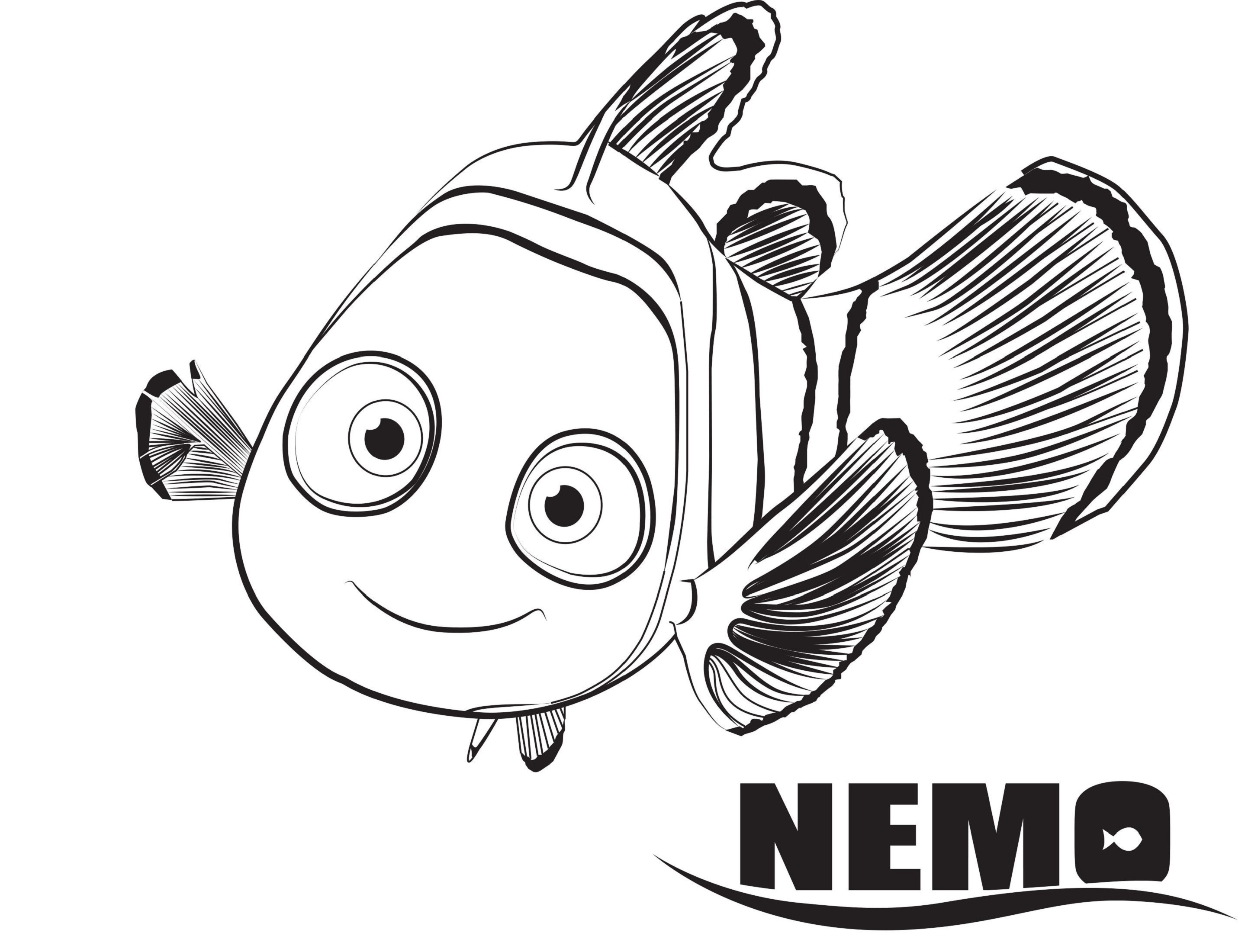 Mr ray finding nemo memes wiring diagram database