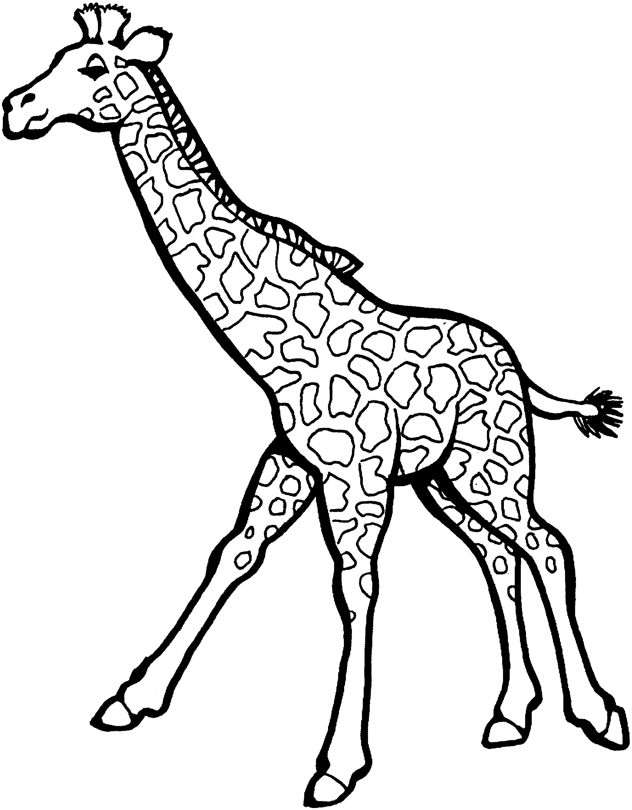 Giraffe Coloring Pages For