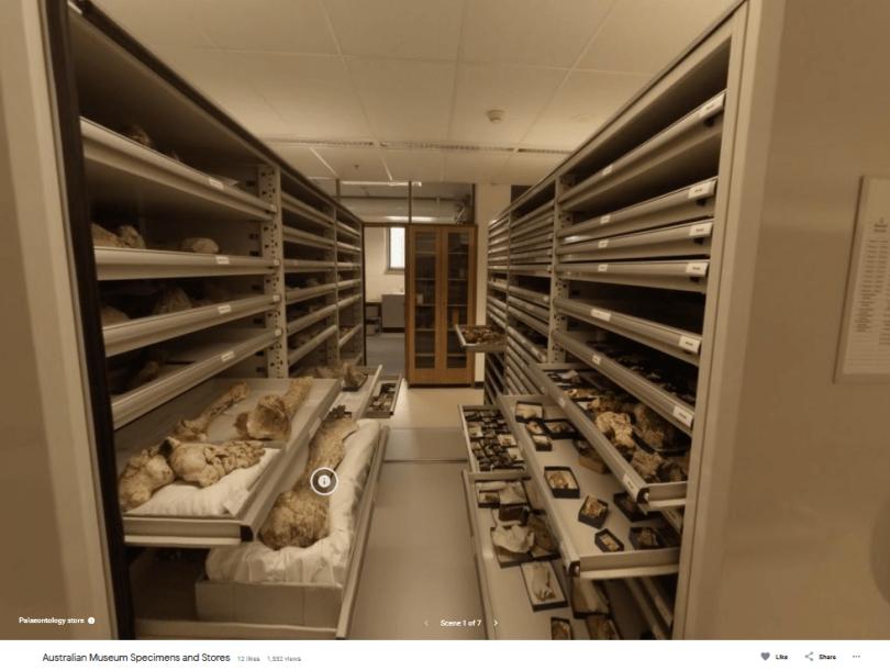 Australian Museum 3D Tour on Google Poly