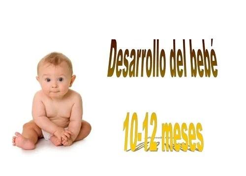 desarrollo 10-12 meses en el niño