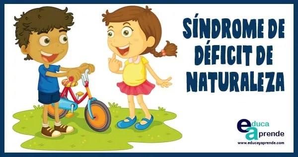 Síndrome de déficit de naturaleza