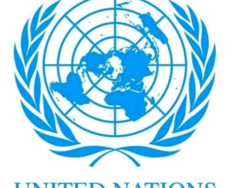 Volunteer with Model United Nations Development Organization, Delta State