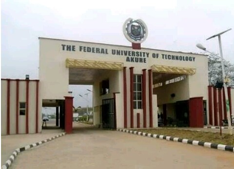 FUTA students to represent Nigeria in Microsoft Imagine Cup