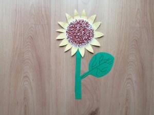 Słonecznik - praca plastyczna z wykorzystaniem talerzyka i folii bąbelkowej