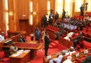 Nigerians Reject Immunity For Senate President, Speaker, Others