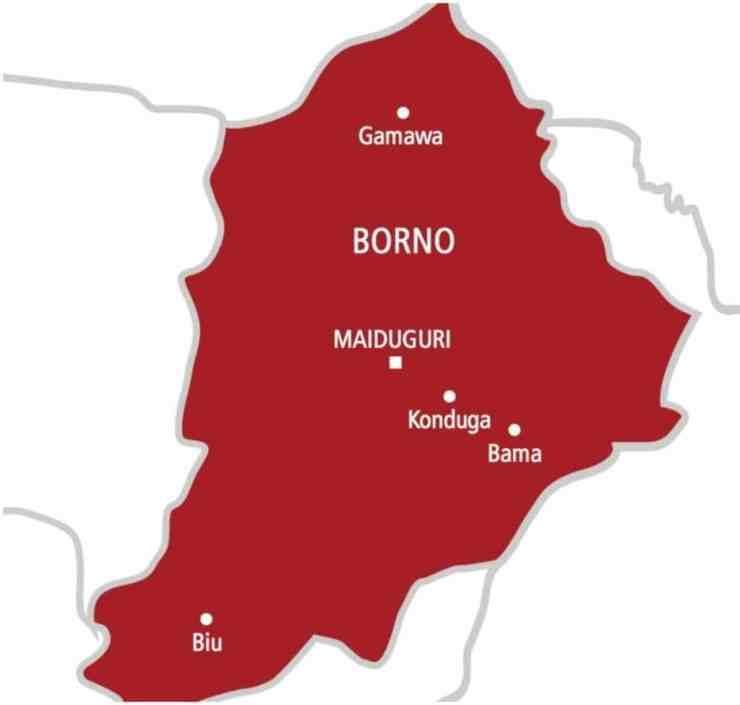 Residents raise concern as repentant Boko Haram members resumes killing in Borno