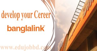 Banglalink Senior Manager Job Circular free download