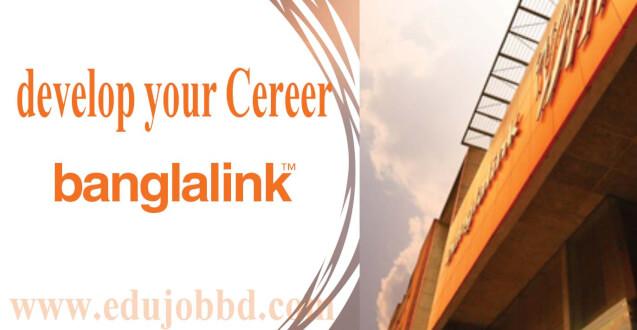 Banglalink Senior Manager Job Circular free download