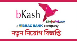 Bkash Job circular 2019