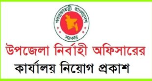 Upazila Executive Officer Job Circular