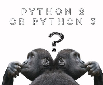 Python 2.x or Python 3.x