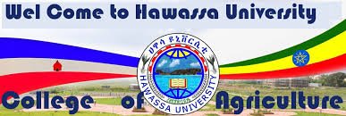Hawassa University Portal