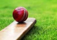 cricketism
